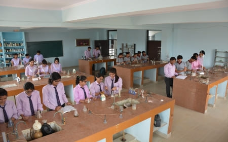 Mehta College